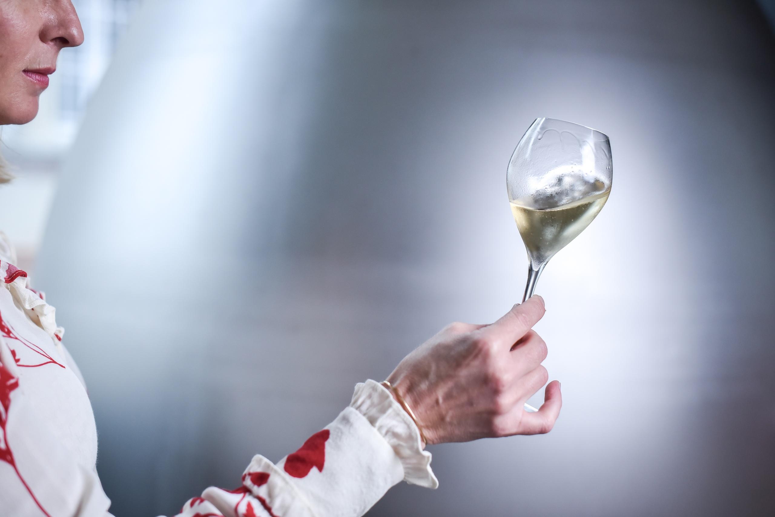Nuestro Estilo - Champagne Ayala